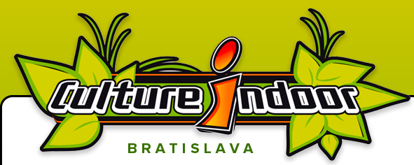 CULTURE INDOOR BRATISLAVA